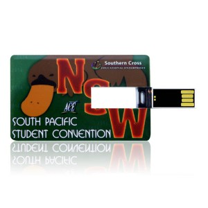 Custom printed business card flash drives bc 106 reheart Images